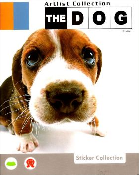 The Dog - Artlist Collection - Preziosi - Italie